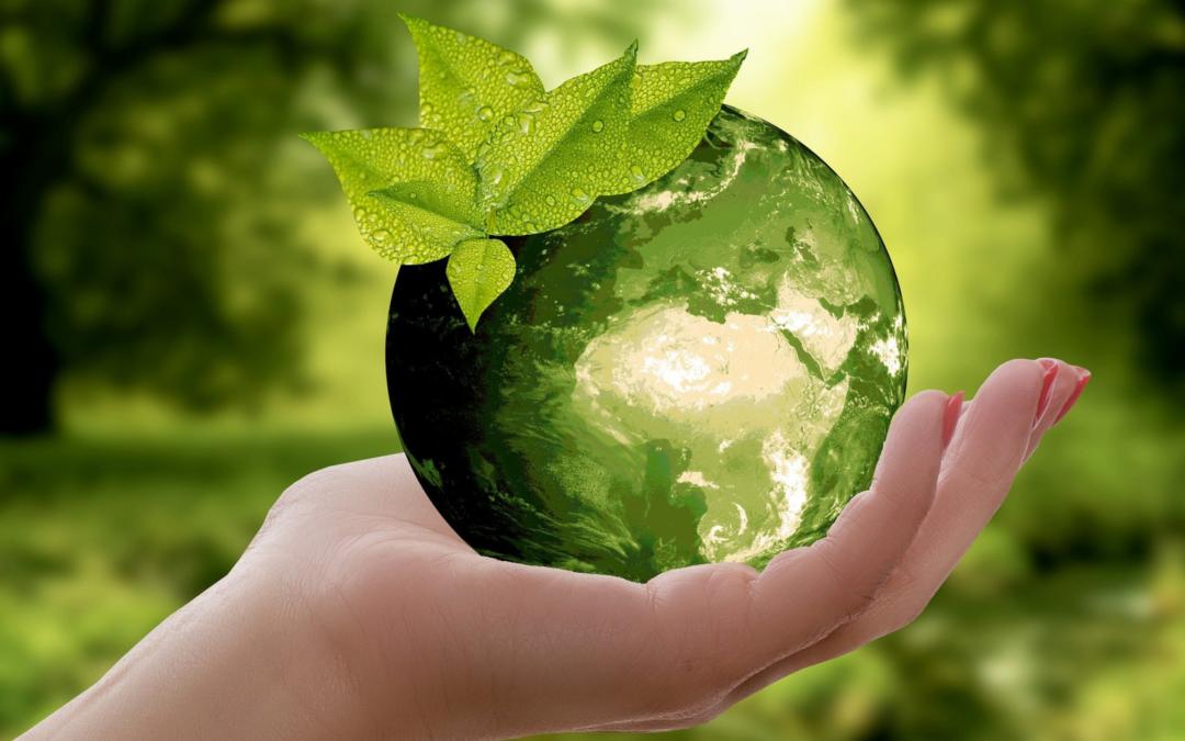 """Nachhaltige Investments: """"Die Welt ist so schön und wert, dass man um sie kämpft."""""""
